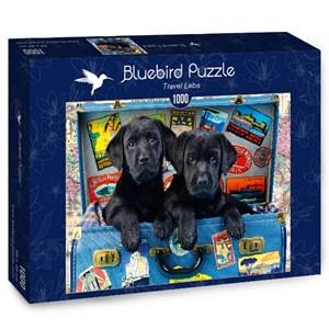 "Bluebird Puzzle (70328) - Greg Cuddiford: ""Travel Labs"" - 1000 brikker puslespil"