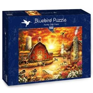 "Bluebird Puzzle (70416) - Chuck Pinson: ""Honey Drip Farm"" - 2000 brikker puslespil"