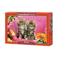 """Castorland (C-103775) - """"Kittens on Garden Chair"""" - 1000 brikker puslespil"""